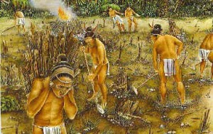 Mayan-People-Farming