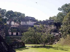 Ancient Mayan City Tikal Central Acropolis Seen Across the Great Plaza