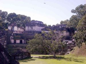 The Central Acropolis seen across the Great Plaza Tikal Ruins